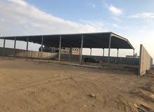 موقع متميز للاستثمار طويل الاجل في مدينة جدة  ( مخطط الفيروز  )