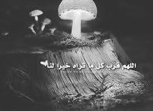مطلوب نجارين أبواب من داخل المملكه  علي مستوي عالي  وعلي الفور