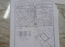 ارض سكنية ولاية بدبد السيح الأحمر مربع 11 موقع ممتاز مقابل جامع السلطان قابوس