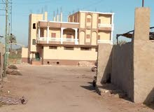 (هذا العقار بمصر )للبيع45فدان أرض زراعية ملك لواء شرطة