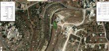ارض للبيع في اراضي ناعور، العال والروضة، اللبة من المالك مباشرة