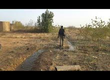 مزرعه بشرق النيل