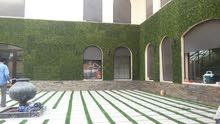 عشب صناعي  جداري