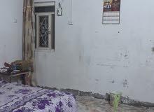 ابو الخصيب كوت ثويني قرب ساحة الطوبه معروض للبيع