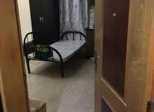 سكن مشترك عجمان شباب عرب منطقة ليوارة 1 خلف محطة باص عجمان أول أساكن فرش جديد 600 درهم شامل