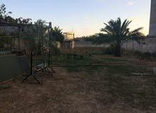 1000 متر للبيع في السبعة خلف جامع قصيعة