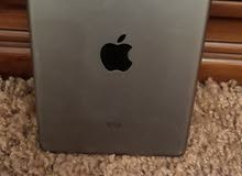 iPad mini 2 16  wifi ممتازة