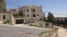 excellent finishing palace for sale in Amman city - Marj El Hamam