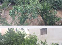 قطعة ارض في حي نزال الذراع الشرقي للبيع