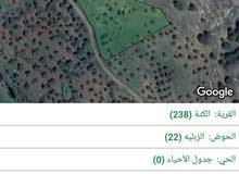 للبيع مزرعة 3600 مشجرة اشجار زيتون مفروزة بقوشان