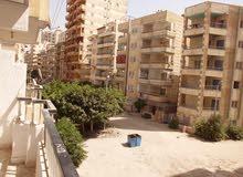 شقة 110 متر طابق تاني بجوار الشارع الرئيسي وبقلب الخدمات في النخيل