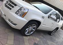 Cadillac Escalade 2014 in Ajman - Used