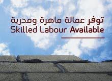 مكتب توفير عماله من مصر و الحاق عماله مصريه بالخارج