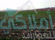 قطعة ارض على طريق المطار التنموي الجديد خِلف جامعة الاسراء ، القليب اللبن للبيع