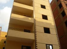 More than 5 apartment for sale - Maadi