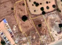 قطعتين ارض للبيع مع بعض سريع المغاربة