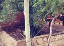بيت مستقل في منطقة الزرقاء الجديدة قرب  قصر ابو الفول ( قرب الخدمات - + مخزن مؤج