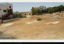 ارض للبيع في مرج الحمام / الحويطي بسعر مغري