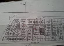 عدد 2 قطعة أرض مباني