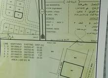 للبيع ارض سكنيه بركاء الدهس كونر قريب الشارع السريع فرصه للبناء
