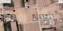 قطعة أرض مساحة 1000 متر مربع مسيجة