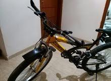 دراجة جبالية  أيطالية حجم 28. كوبرا