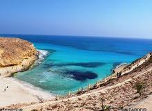 شقه تري البحر و بالقرب من كافه الخدمات الشقه بالقرب من شاطىء العوام