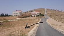 ارض مميزة في اسكان الرياض بيرين قوشان مستقل بجانب ام رمانة شفا بدران شبة مستوية