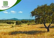 ارض للبيع في اجمل مناطق الرابية , مساحة الارض 1175 م