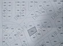 قطعة أرض في اجمل مناطق الزرقاء الجديدة _ شارع الكرامة