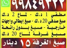 اصباغ الربيع أقل الأسعار عند ابو احمد