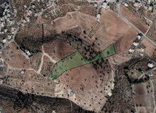 ارض 7دونم للبيع في منطقة بدر الجديدة قريب للخدمات قريب للتعبئة