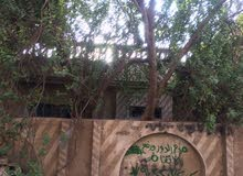 بيع بيت فرز 120م مربع في الدورة