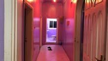 شقة غرفتين وحمامين للايجار