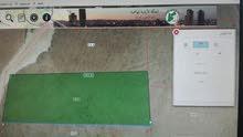 ارض 10 دنم في ابو صياح قمة جبل على شارع 20 بسعر مغري قوشان مستقل طابو فوري.