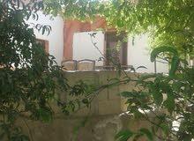 مزرعه 4دلمات مع درين دار عدد الغرف سبعه ودار ر يفيه مزرعه مشجره جميع الشجار