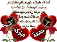 طارق احمد محمد صالح الحاج  717443622