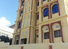 عماره للايجار مدرسه خاصه او منظمه او مستشفى في إب