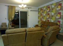 شقة مفروشة للايجار دقائق من عباس العقاد بطريق النصر الرئيسي بمدينة نصر