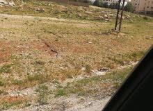 قطعة ارض للبيع شفا بدران حوض طاب كراع