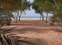 ارض للبيع  علي البحر مباشرة بمشروع الجرف بمنطقة غنتوت علي اجمل سواحل الأمارات