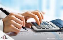 محاسب محترف مهنية + Excel