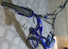 قاري (دراجة هوائيه) للبيع