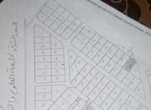 ارض للبيع /الرمثا/عبطان الشمالي (76)/شرق جامعة العلوم والتكنلوجيا