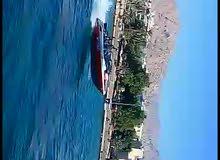 قارب اريفا
