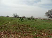 ارض للبيع في بدر الجديدة بمساحة 522 م