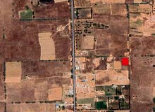 قطعة ارض شرق تقاطع ترفاس 3 كيلو متر