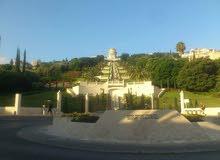 شركه تنسيق حدائق بالمدينة