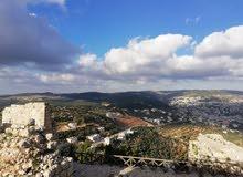 قرب بلدية عين جنا