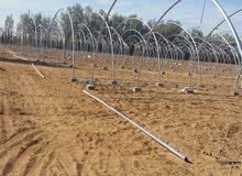 بيوت زراعية محمية بلاستيكية جديد ومستعمل للبيع